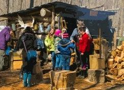 Almonte sugarbush activities at Fortune Farms
