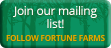 Join the Fortune Farms mailing list