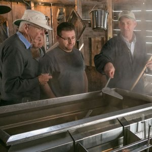 Maple syrup making at Fortune Farms