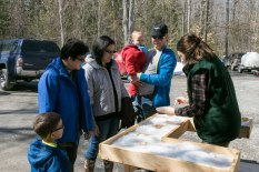 almonte-sugarbush-activities_FortuneFarms-150403-0187