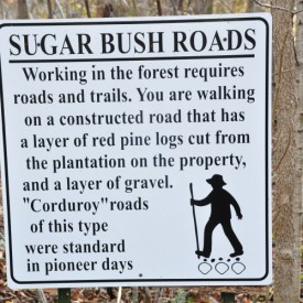 Sugarbush Roads